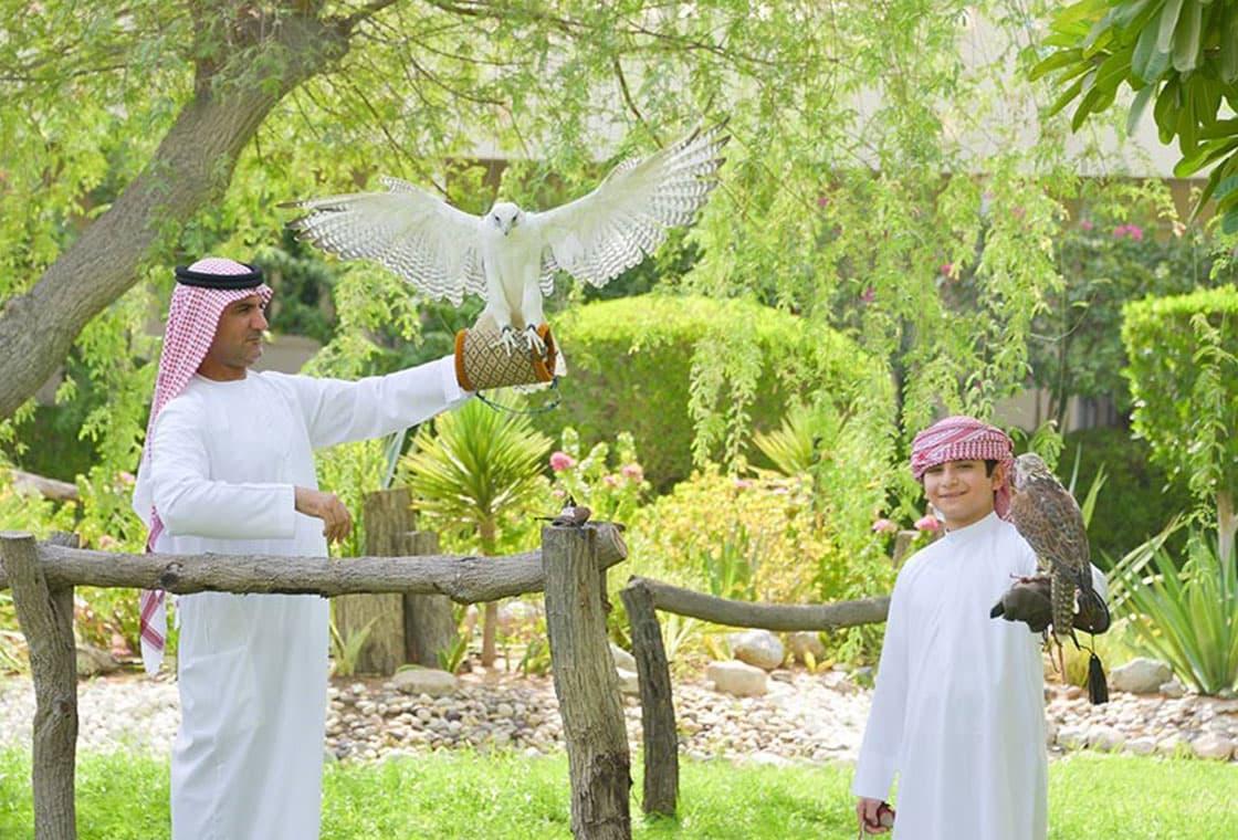 Thumbnail image from United Arab Emirates ~ featuring the Dubai Expo